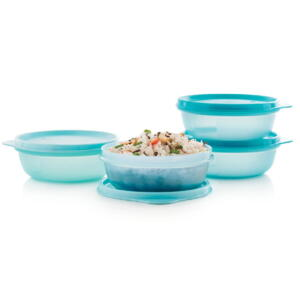 SPACE SAVER LEFTOVER BOWLS (4)
